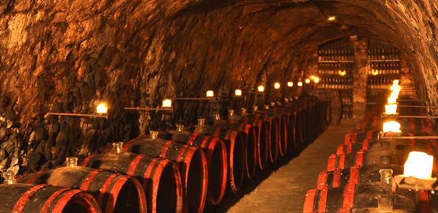 【スロバキア産】貴腐ワイン トカイ・クラシック・6プット《Tokaj Classic 6-putnyovy 》【サクラアワード・ダブルゴールド受賞ワイン】